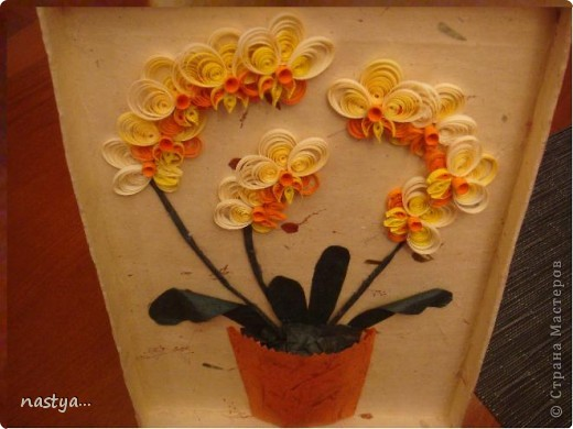 Орхидеи =) фото 3