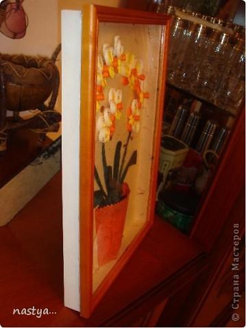 Орхидеи =) фото 2