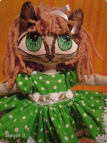Кошечка Мусенька фото 5