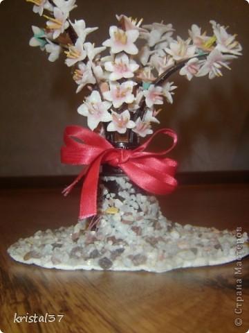 Вот она... Моя сакура!!! 77 цветочков на 7 ветках... фото 7
