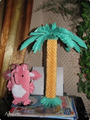 Слонёнок и пальма