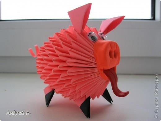 Свинка фото 4
