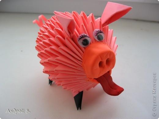 Свинка фото 1