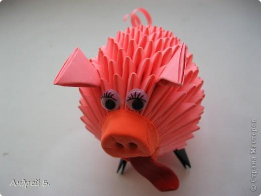 Свинка фото 3