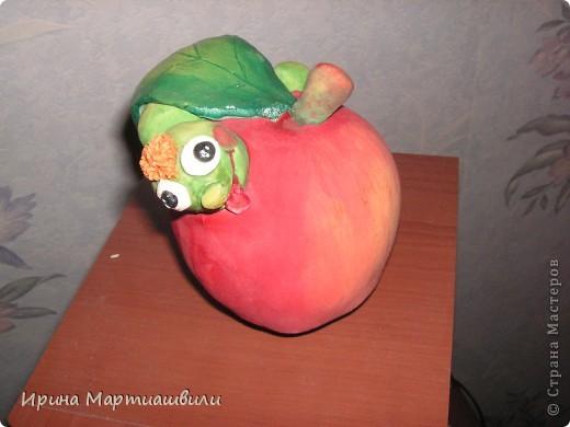 Яблоко с гусеницей  фото 3