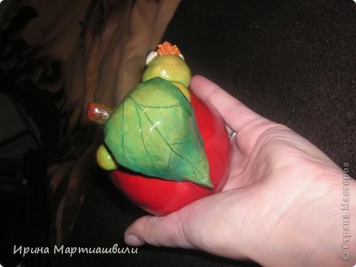 Яблоко с гусеницей  фото 4