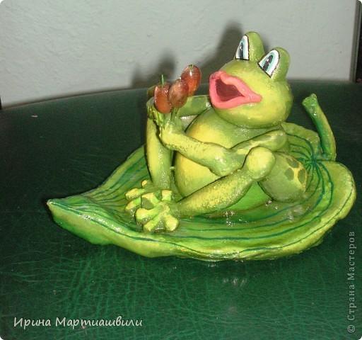 Лягушка с камышами фото 1