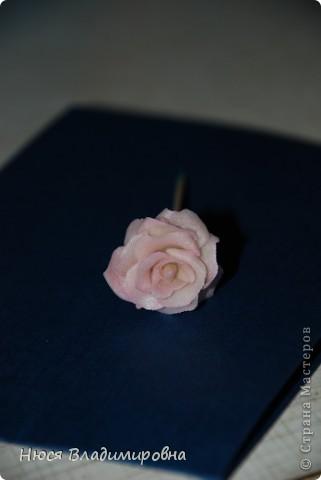 Эта розочка вылепилась в процессе пробы материала.  фото 3