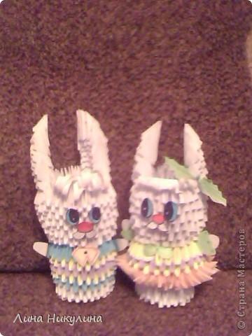 два зайца  фото 1