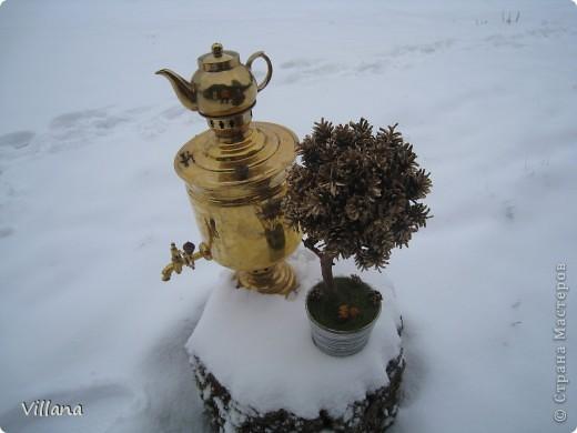 Это дерево из шишек я сделала в подарок на день рождение моему старшему брату.Шишки покрыты золотой краской, но на снегу этого не видно:( фото 2