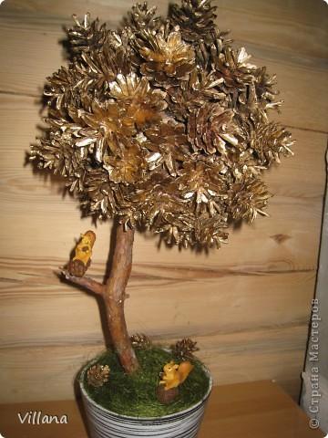 Это дерево из шишек я сделала в подарок на день рождение моему старшему брату.Шишки покрыты золотой краской, но на снегу этого не видно:( фото 3