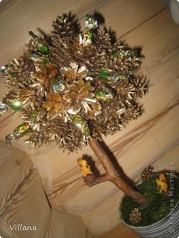 Это дерево из шишек я сделала в подарок на день рождение моему старшему брату.Шишки покрыты золотой краской, но на снегу этого не видно:( фото 6