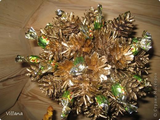 Это дерево из шишек я сделала в подарок на день рождение моему старшему брату.Шишки покрыты золотой краской, но на снегу этого не видно:( фото 5