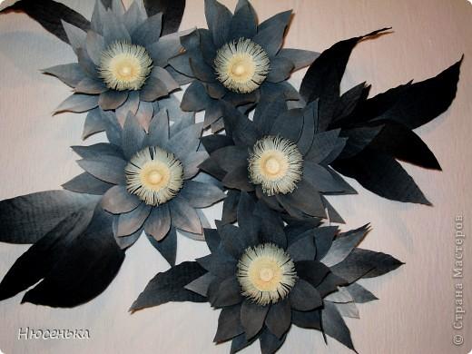 Таинственные цветы. фото 2