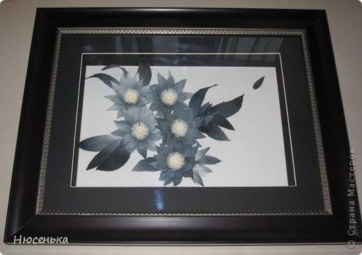 Таинственные цветы. фото 3