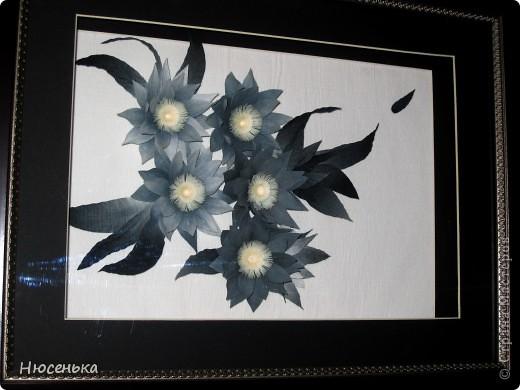 Таинственные цветы. фото 1