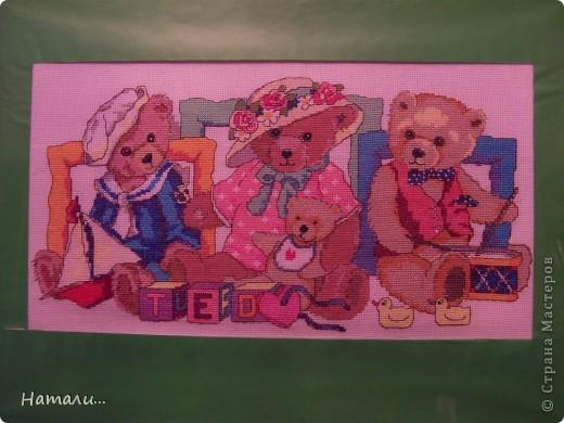 Семья медведей фото 2
