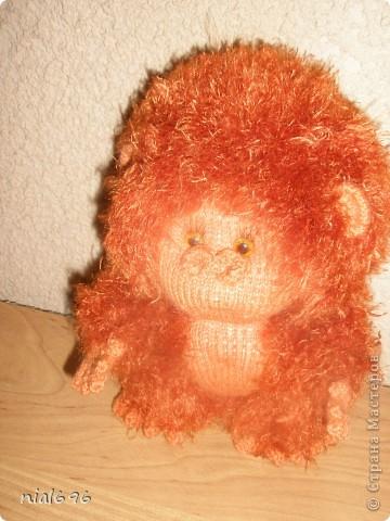 орангуташка фото 1