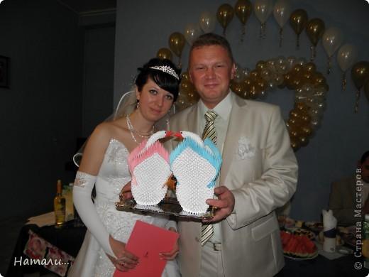 свадебные лебеди фото 2