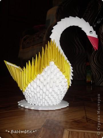 Лебедь в технике модульное оригами фото 2