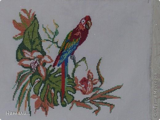 Вышивка крестом Попугай