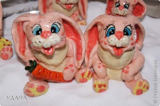 вот и зайцы на поляне фото 2