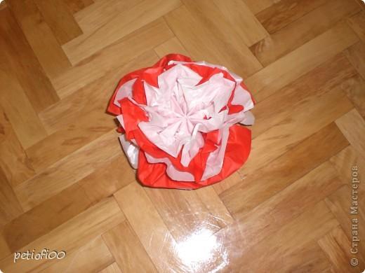 Цветные шары фото 4