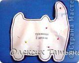 символ нового 2011 года - кот симпот фото 4
