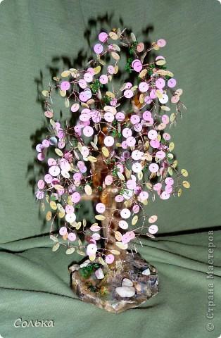 Фантазийная, но точно вишенка. Поскольку расцвела она в ноябре урожай видимо будем собирать как раз к Новому году. ;))) фото 2