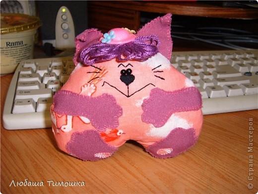 Котик в шляпке