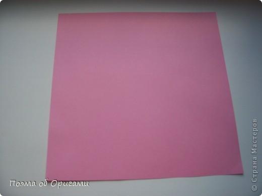 Правильный шестиугольник из квадрата фото 2