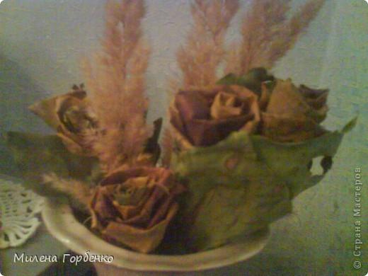 Розы из клена