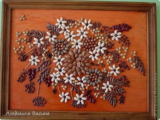 """""""Богатство природы"""".Работа из семян и косточек фруктов. фото 4"""