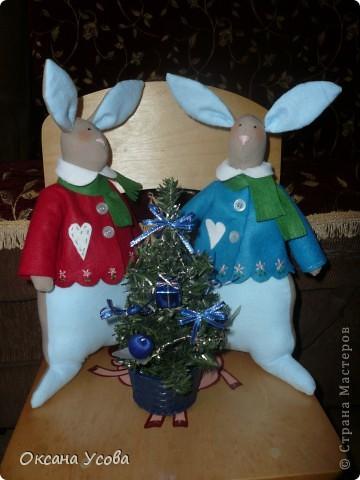 Братцы кролики фото 1