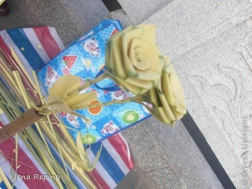 кузнечик из листьев пальмы фото 2