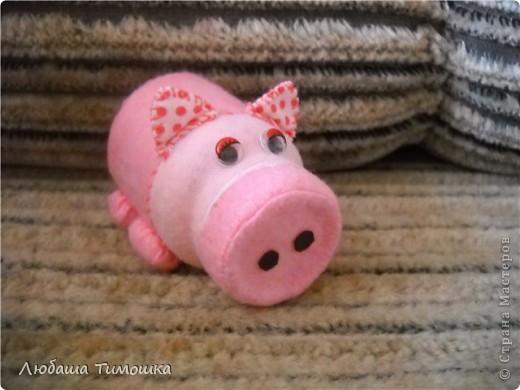 Волшебная свинка фото 1