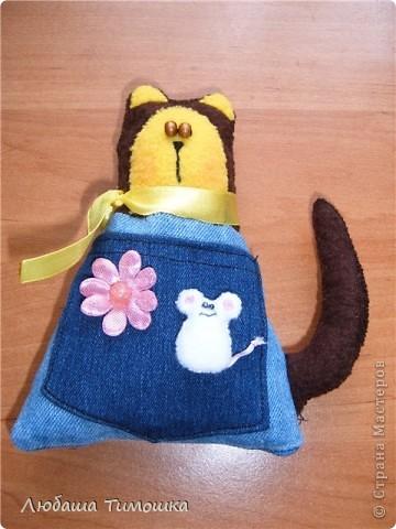 Котейки с кармашками фото 1