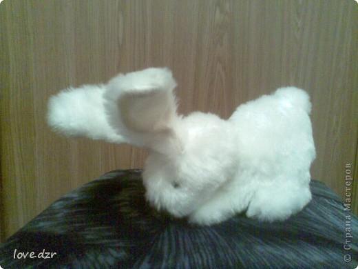 Кролик к новому году фото 1