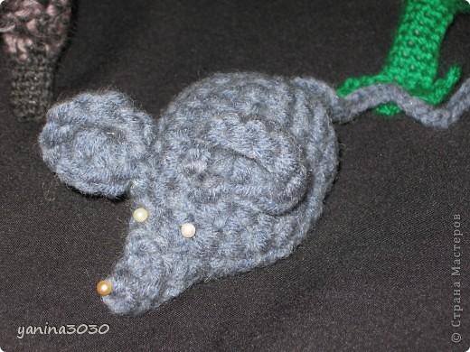 лягушка -квакушка фото 2