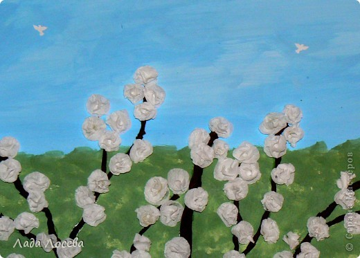 Вишни в цвету фото 6