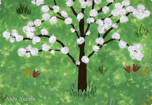 Вишни в цвету фото 8