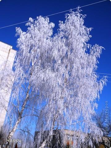 мороз и солнце фото 4