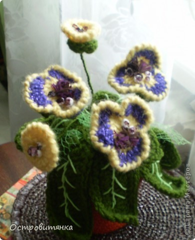 Не знаю, есть ли такие цветы в природе. Но у меня есть!