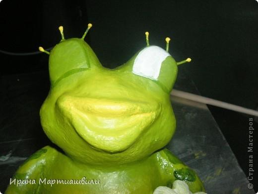 Лягушата фото 12