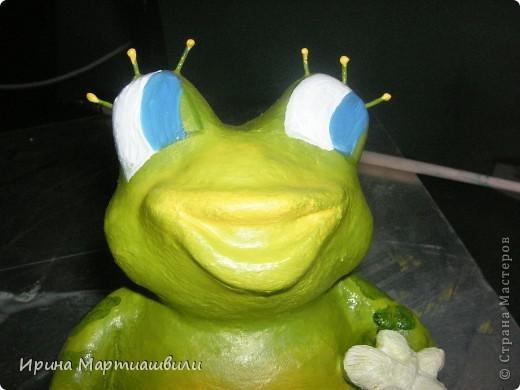 Лягушата фото 13