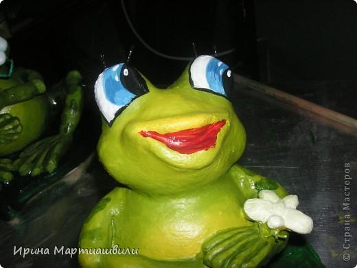 Лягушата фото 15