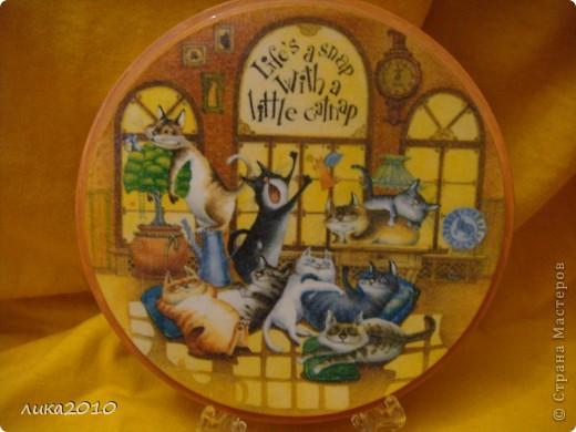 После плотного обеда ( http://stranamasterov.ru/node/119108 ) , вкушения духовной пищи ( http://stranamasterov.ru/node/121026 ) пора отдохнуть, вот котейки и отправились на сладкий сон! фото 1
