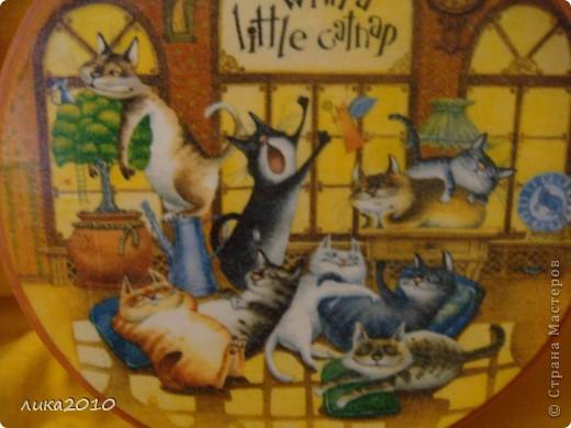 После плотного обеда ( http://stranamasterov.ru/node/119108 ) , вкушения духовной пищи ( http://stranamasterov.ru/node/121026 ) пора отдохнуть, вот котейки и отправились на сладкий сон! фото 2