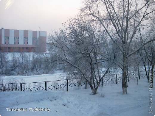 Ёлочка-красавица выполнена из крашеных стружек))) фото 5