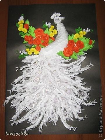 Большое спасибо Ольге Ольшак, ее работы сподвигли меня на создание своих птиц. фото 1